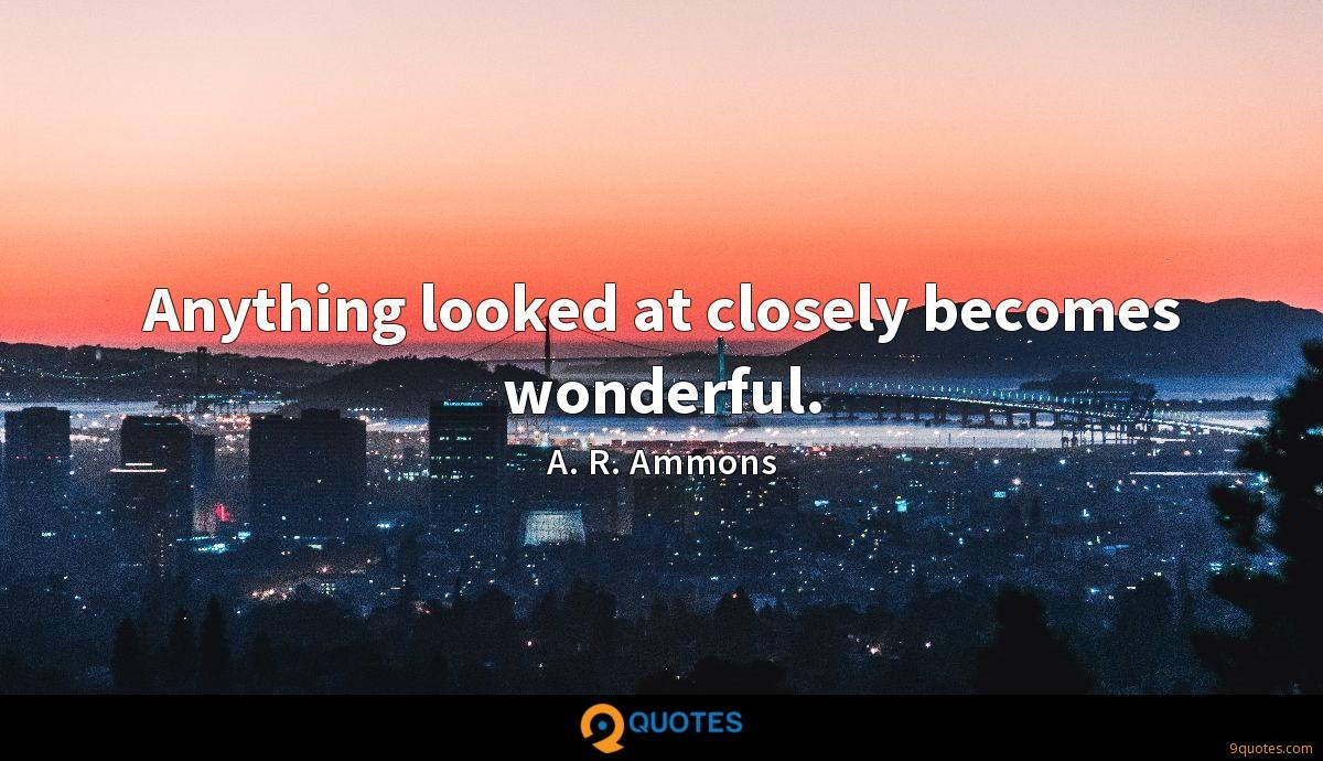 Anything looked at closely becomes wonderful.