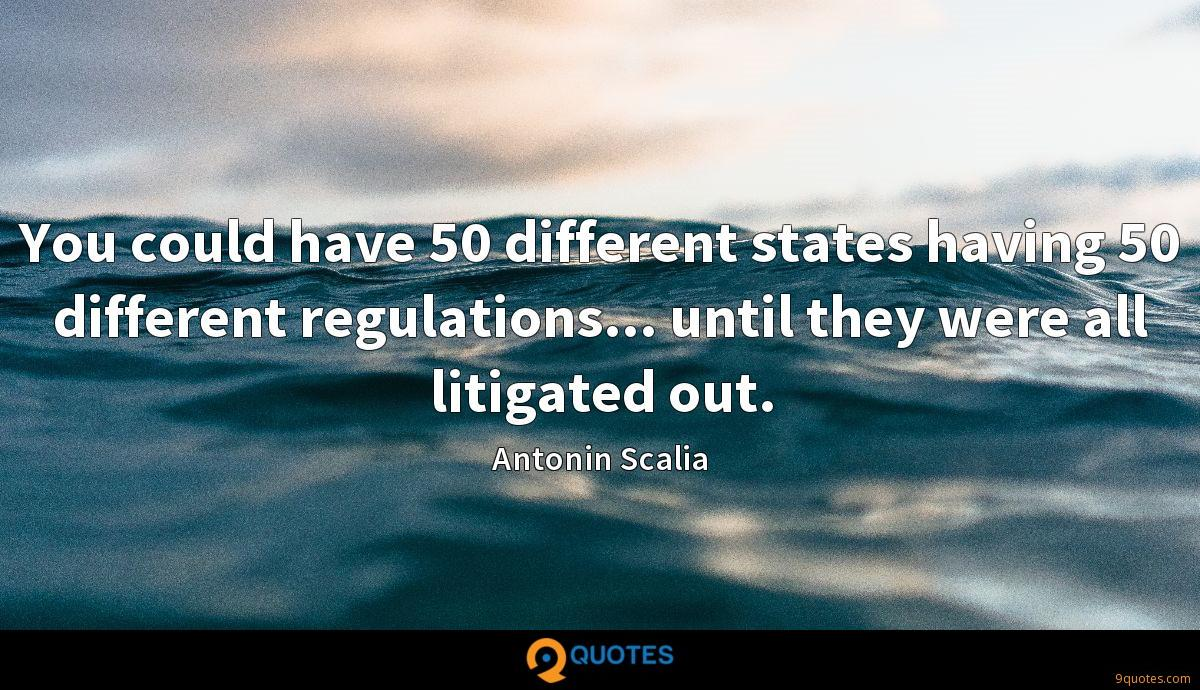You could have 50 different states having 50 different regulations... until they were all litigated out.