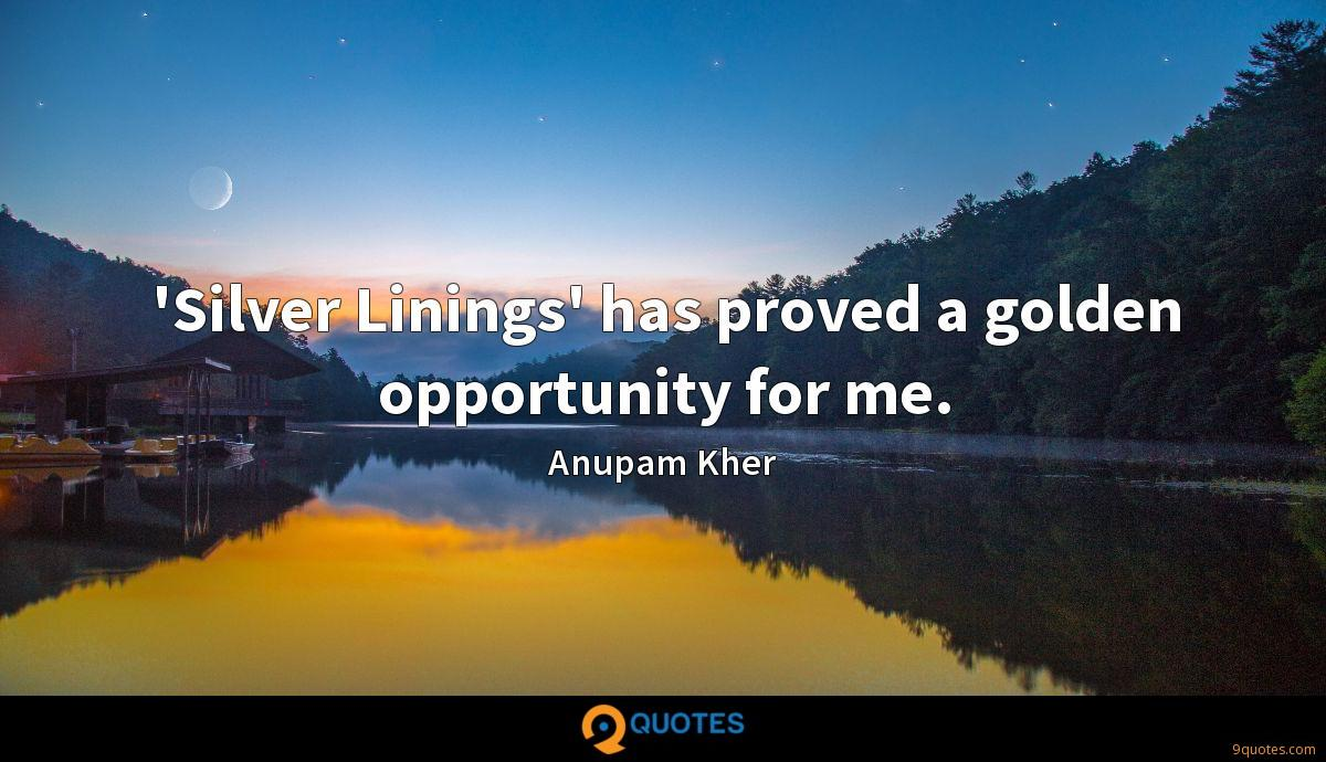 Silver Linings\' has proved a golden opportunity for ...