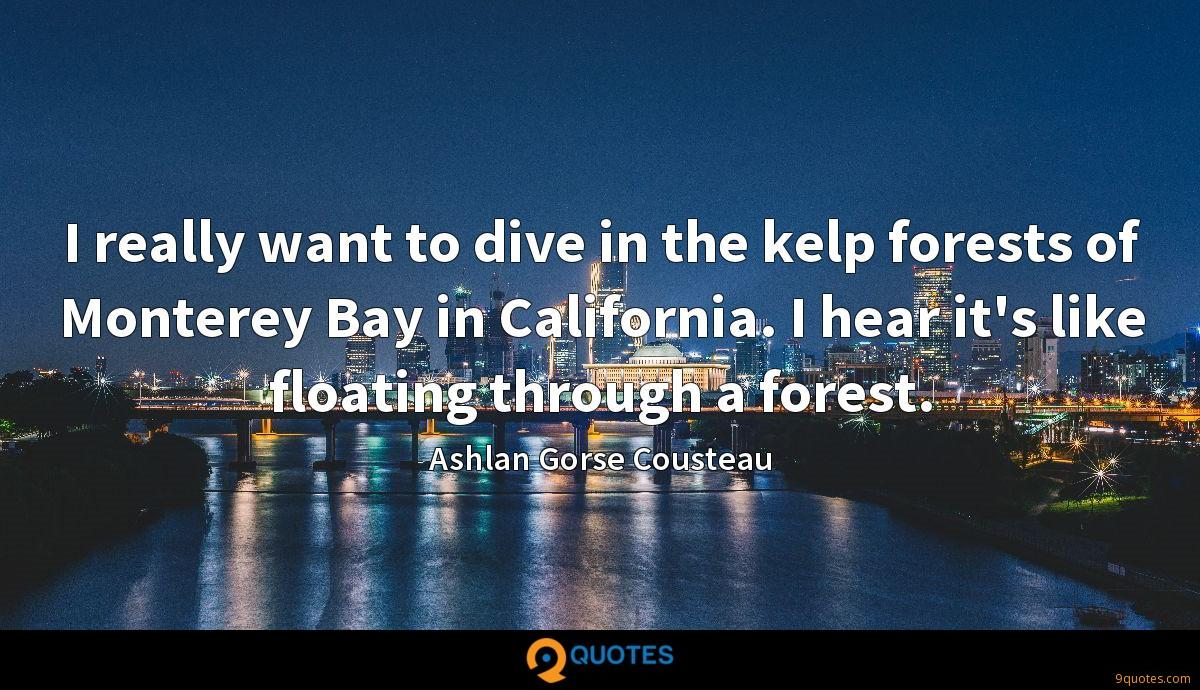 I really want to dive in the kelp forests of Monterey Bay in California. I hear it's like floating through a forest.