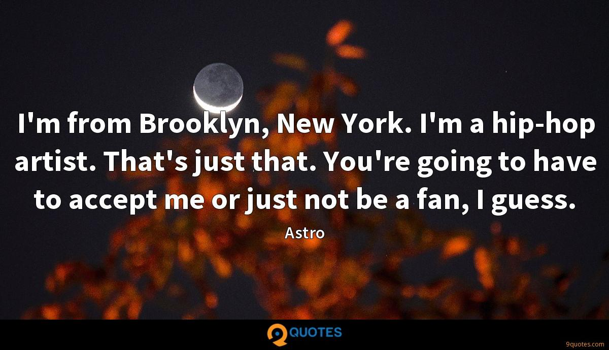 I'm from Brooklyn, New York. I'm a hip-hop artist. That's just that. You're going to have to accept me or just not be a fan, I guess.