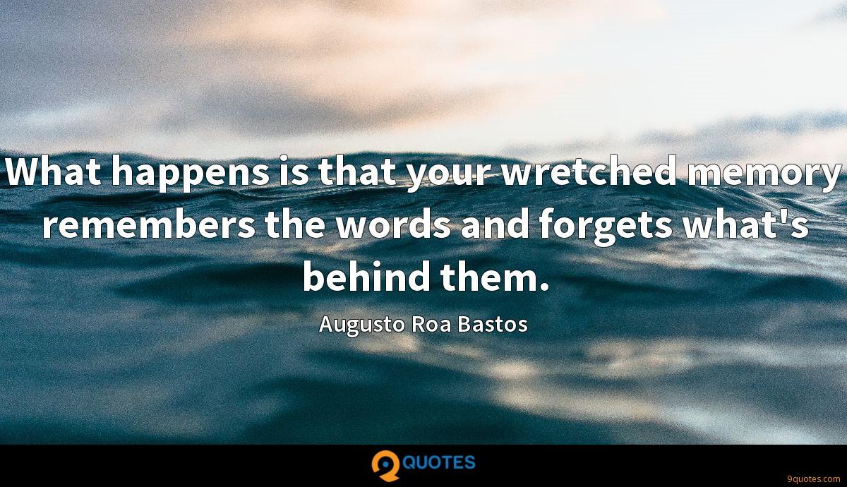 What happens is that your wretched memory remembers the words and forgets what's behind them.