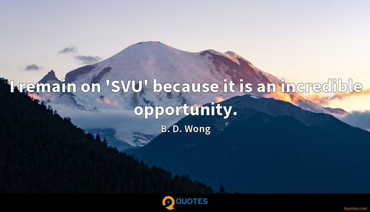 I remain on 'SVU' because it is an incredible opportunity.