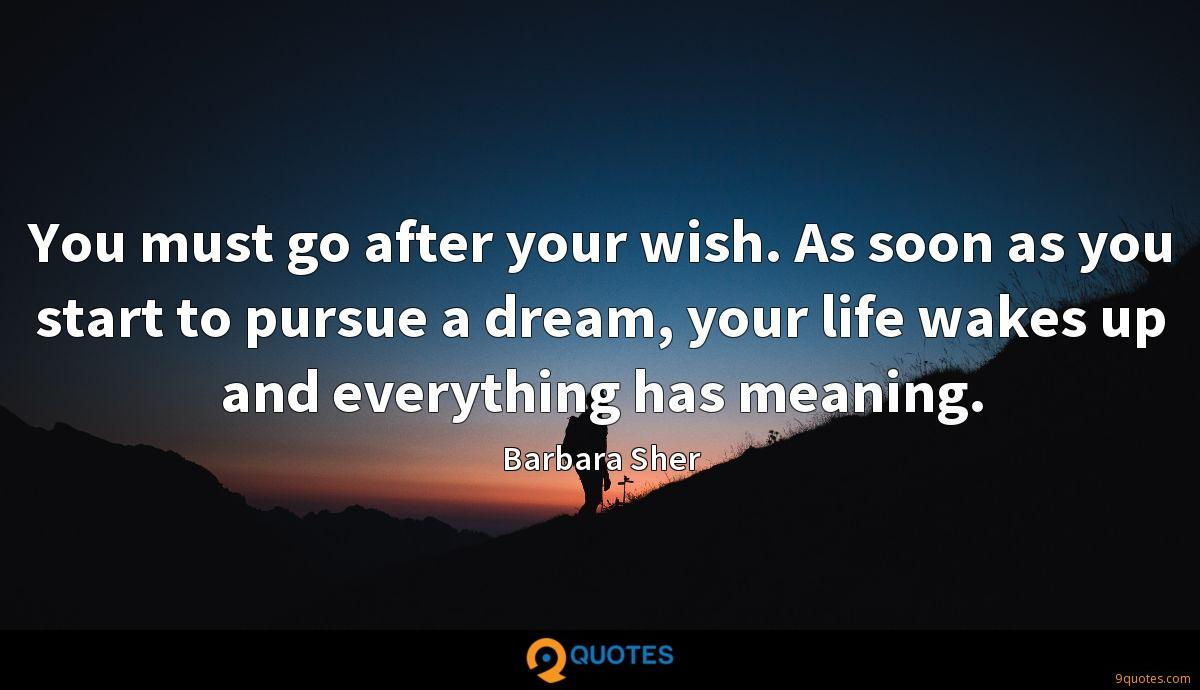 You must go after your wish. As soon as you start to pursue a dream, your life wakes up and everything has meaning.