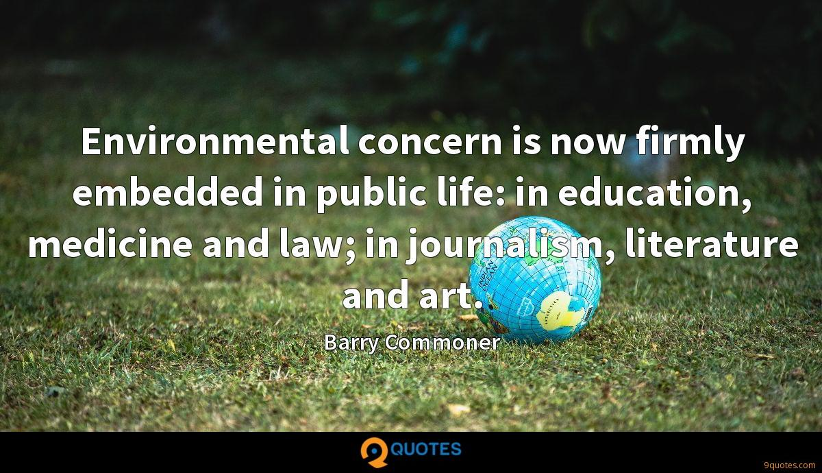 Environmental concern is now firmly embedded in public life: in education, medicine and law; in journalism, literature and art.