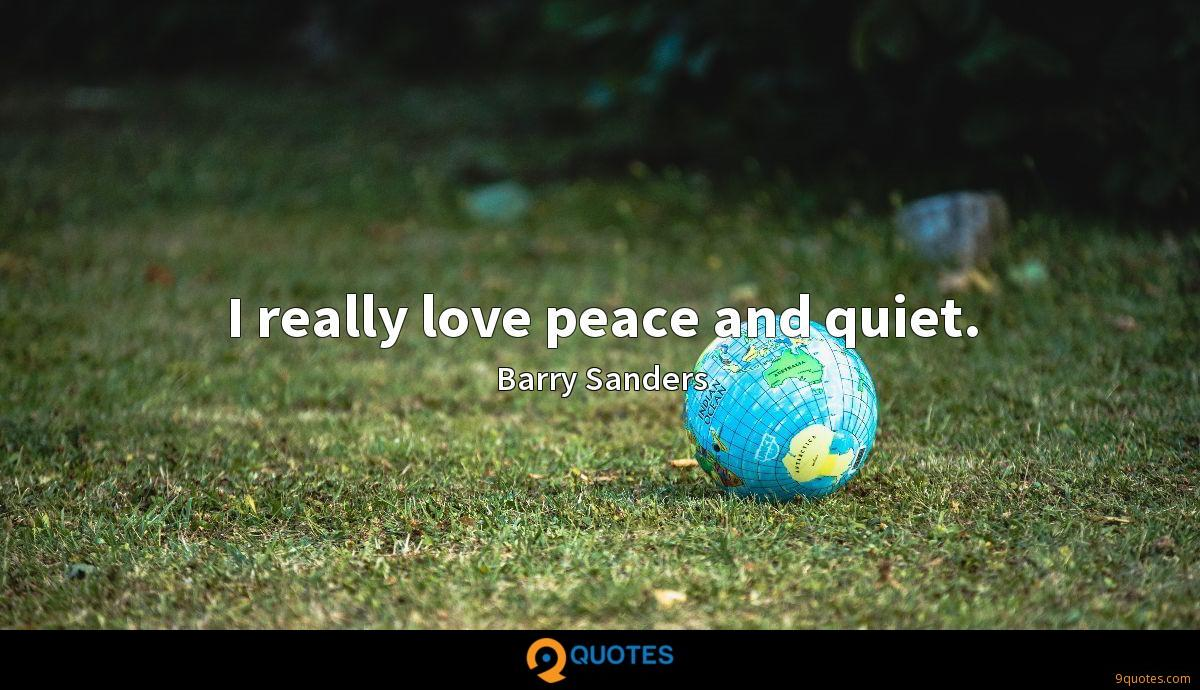 I really love peace and quiet.