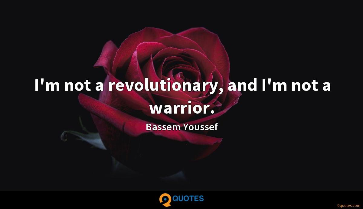 I'm not a revolutionary, and I'm not a warrior.