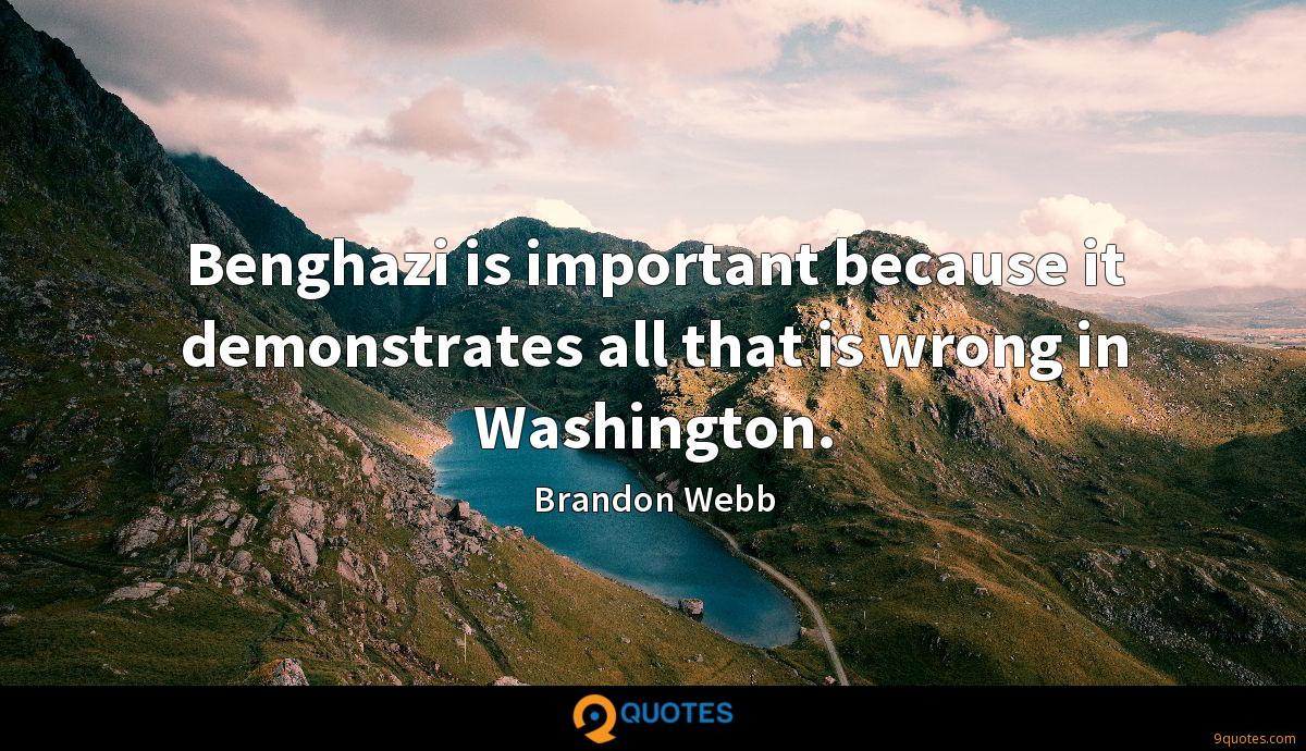 Benghazi is important because it demonstrates all that is wrong in Washington.