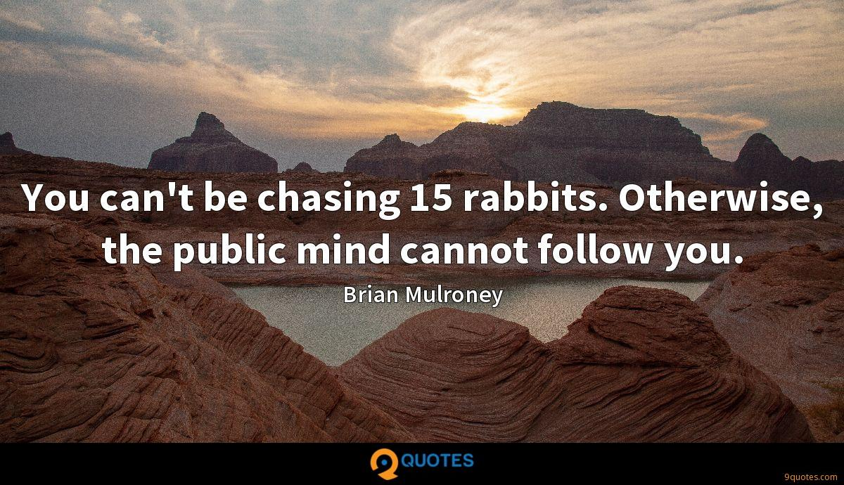 You can't be chasing 15 rabbits. Otherwise, the public mind cannot follow you.