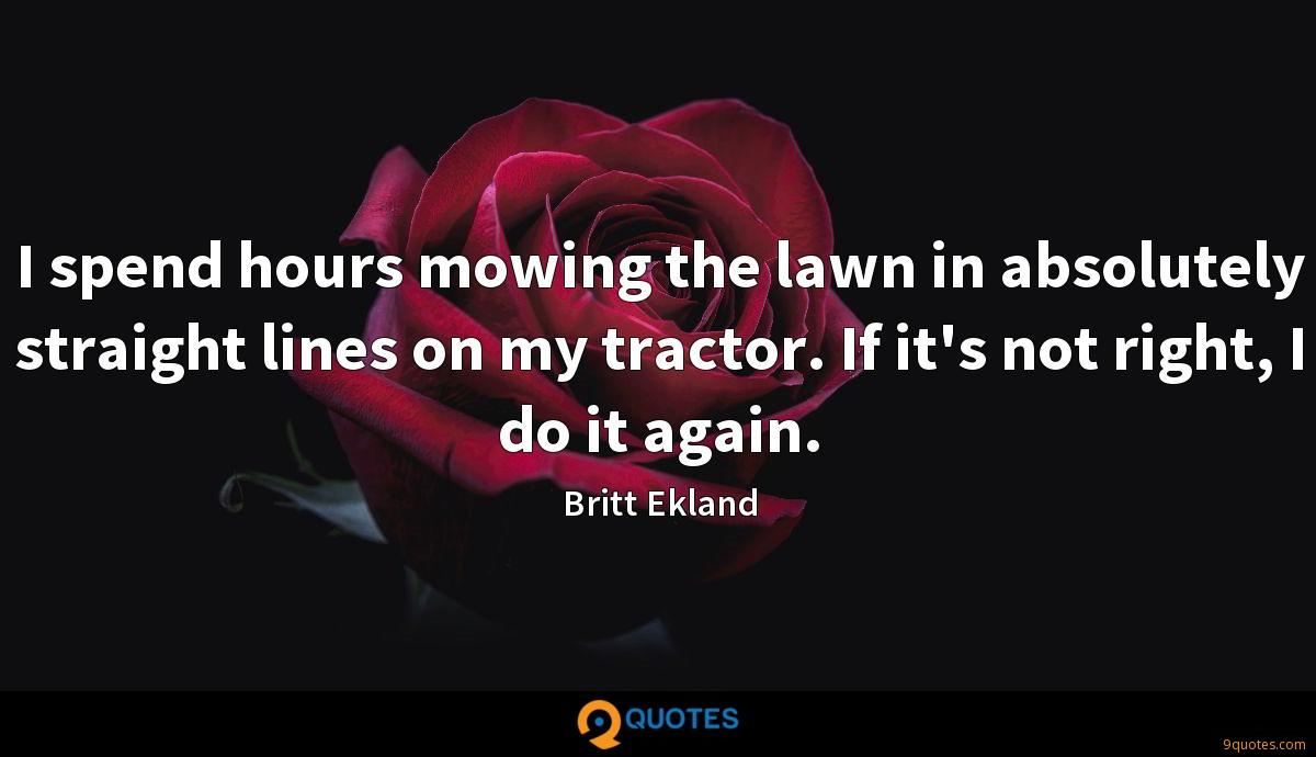 I spend hours mowing the lawn in absolutely straight lines on my tractor. If it's not right, I do it again.