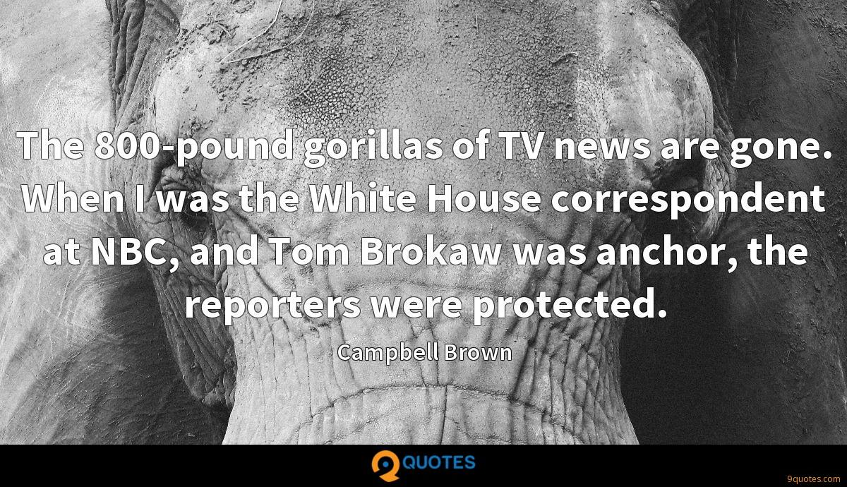 The 800-pound gorillas of TV news are gone. When I was the White House correspondent at NBC, and Tom Brokaw was anchor, the reporters were protected.