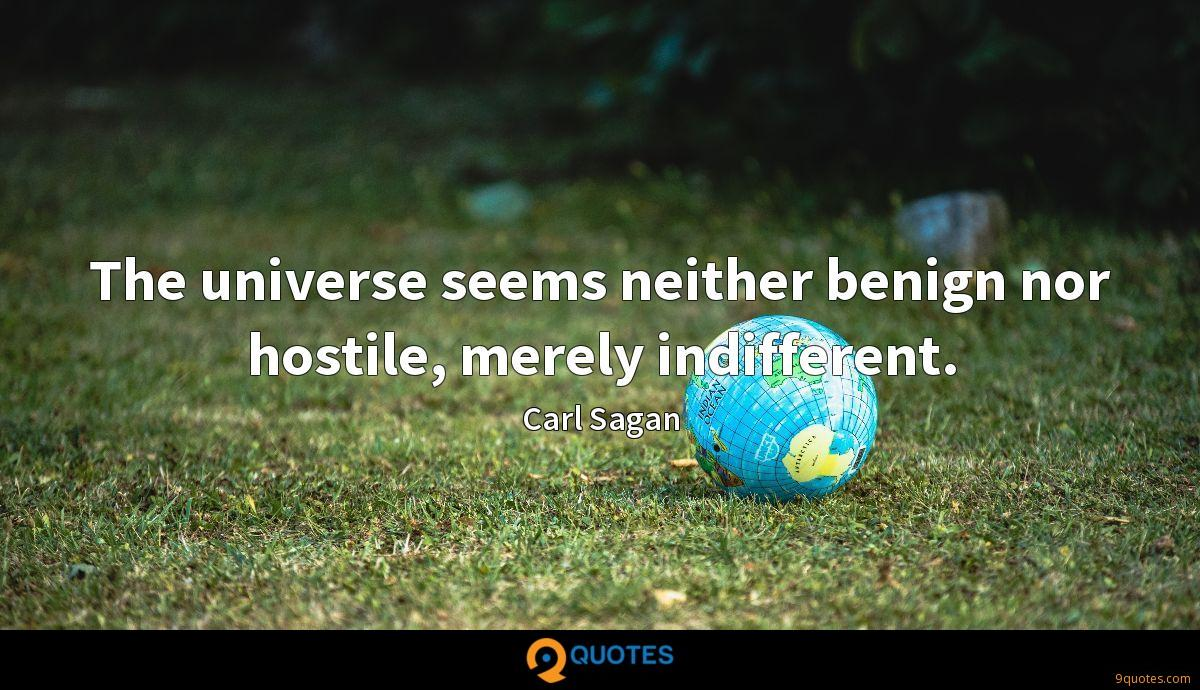 The universe seems neither benign nor hostile, merely indifferent.