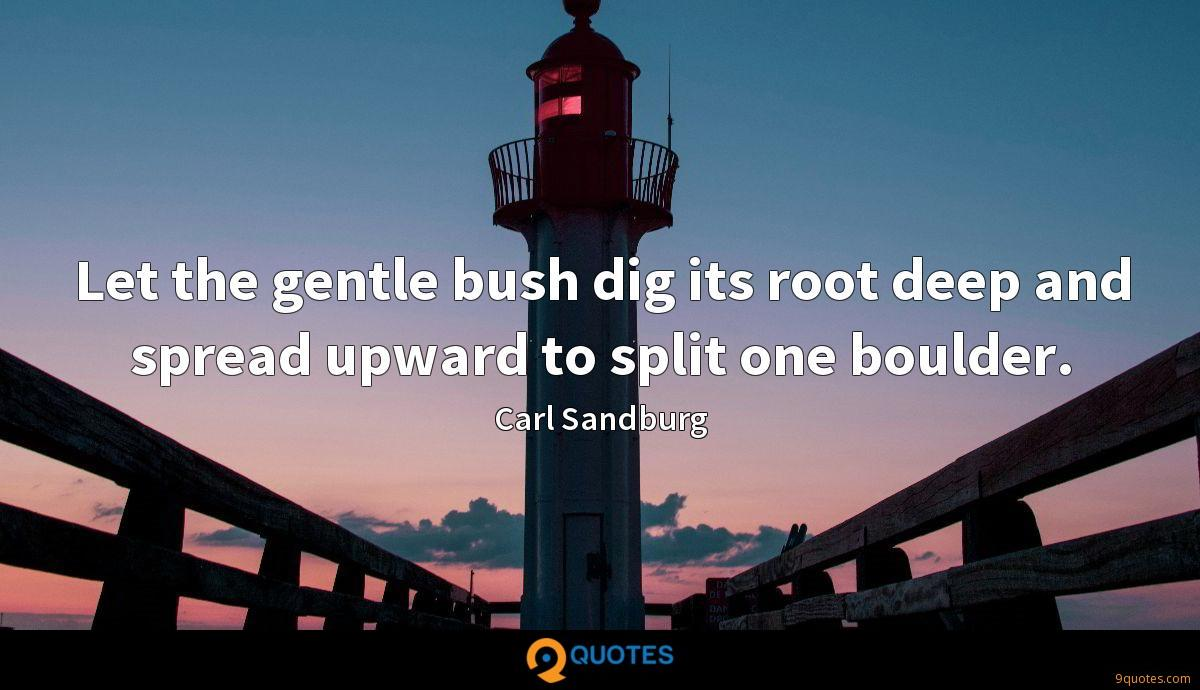 Let the gentle bush dig its root deep and spread upward to split one boulder.
