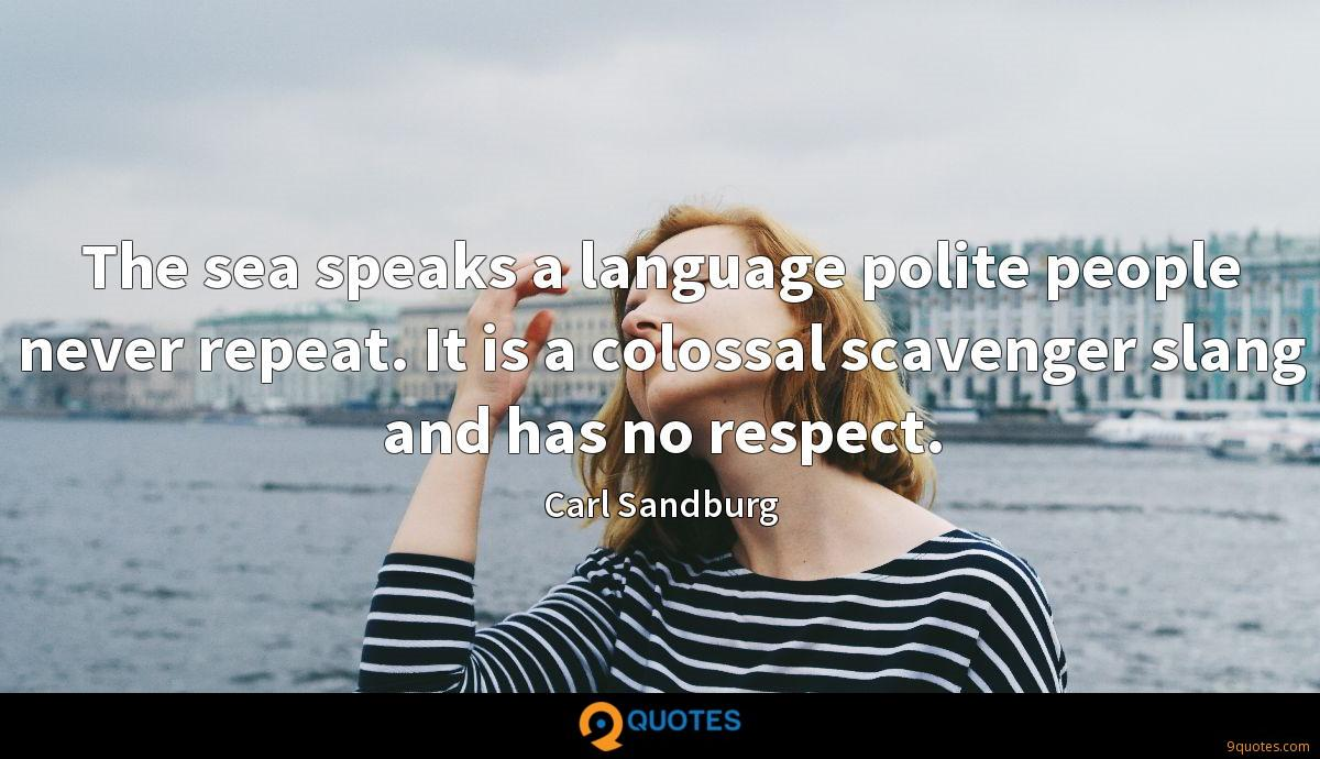 The sea speaks a language polite people never repeat. It is a colossal scavenger slang and has no respect.