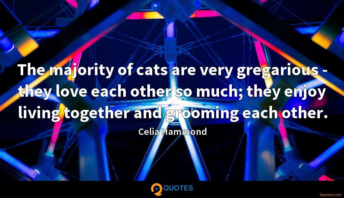 The majority of cats are very gregarious - they love each other so much; they enjoy living together and grooming each other.