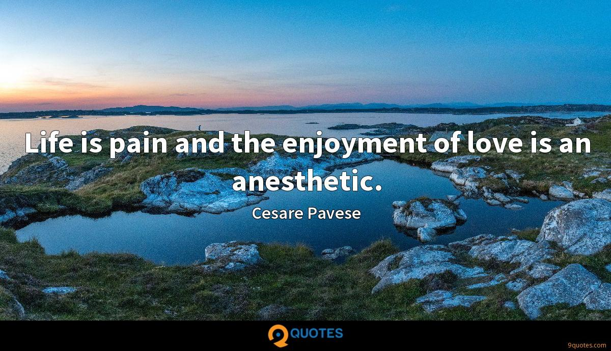 Life is pain and the enjoyment of love is an anesthetic.