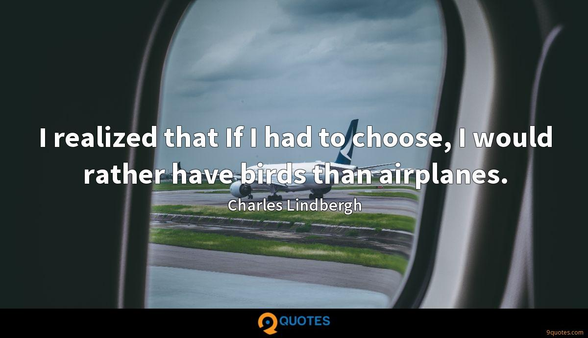 I realized that If I had to choose, I would rather have birds than airplanes.