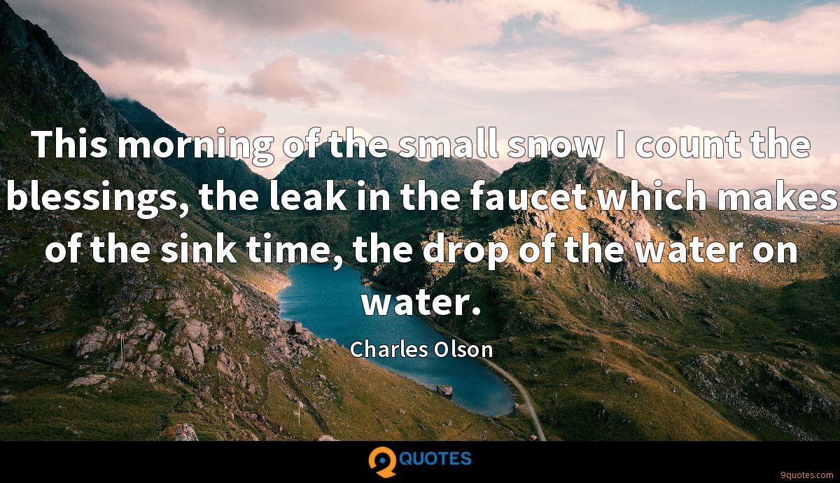 This morning of the small snow I count the blessings, the leak in the faucet which makes of the sink time, the drop of the water on water.