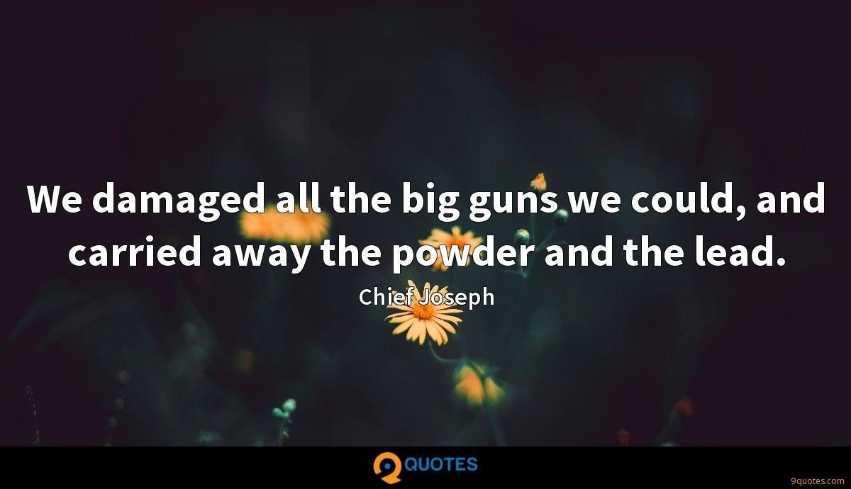 We damaged all the big guns we could, and carried away the powder and the lead.