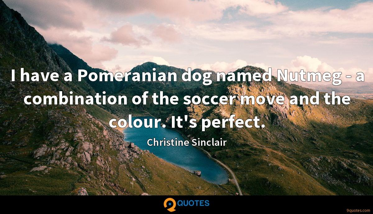 I have a Pomeranian dog named Nutmeg - a combination of the soccer move and the colour. It's perfect.