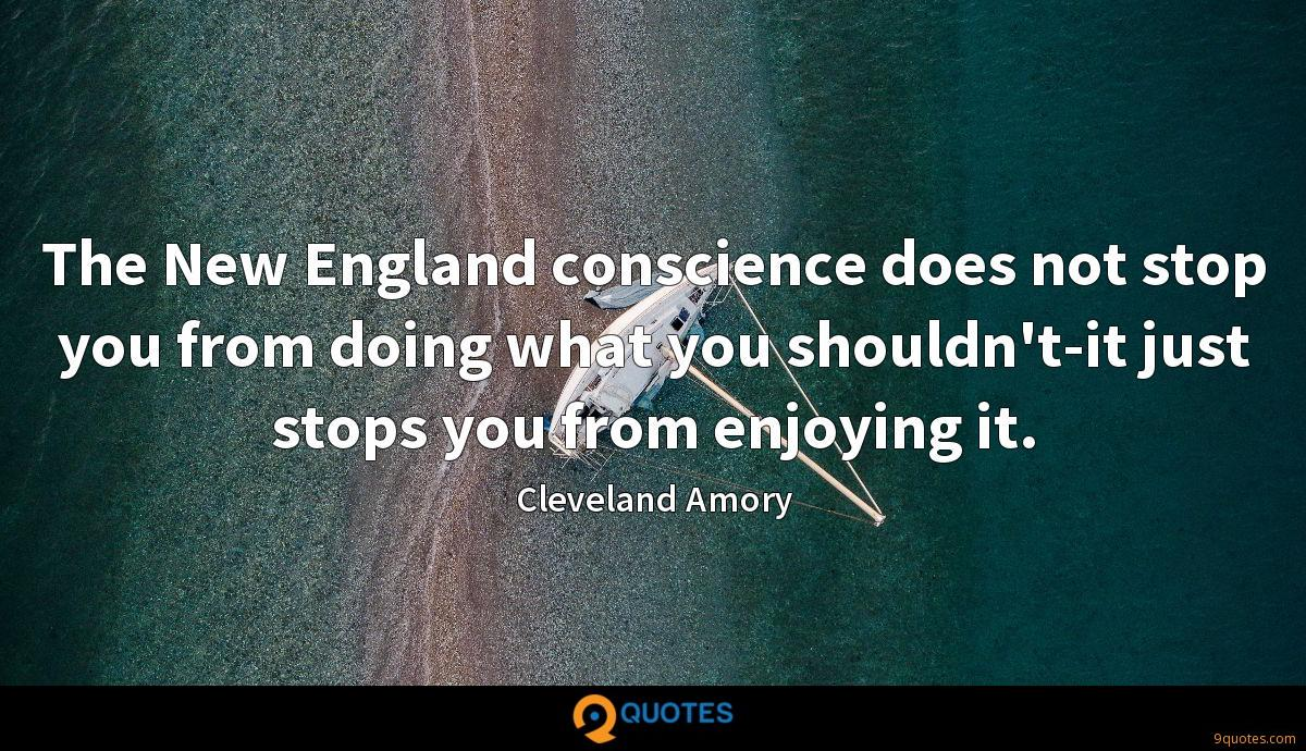The New England conscience does not stop you from doing what you shouldn't-it just stops you from enjoying it.