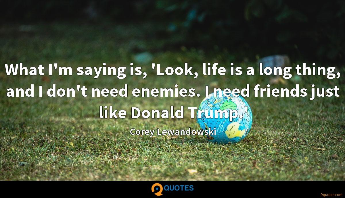 What I'm saying is, 'Look, life is a long thing, and I don't need enemies. I need friends just like Donald Trump.'