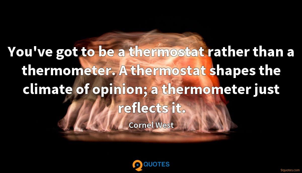 You've got to be a thermostat rather than a thermometer. A thermostat shapes the climate of opinion; a thermometer just reflects it.