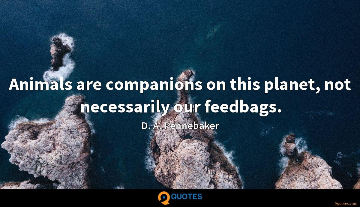Animals are companions on this planet, not necessarily our feedbags.