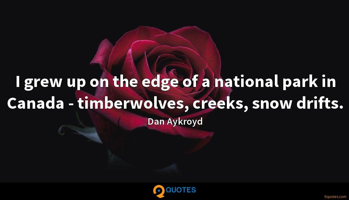I grew up on the edge of a national park in Canada - timberwolves, creeks, snow drifts.