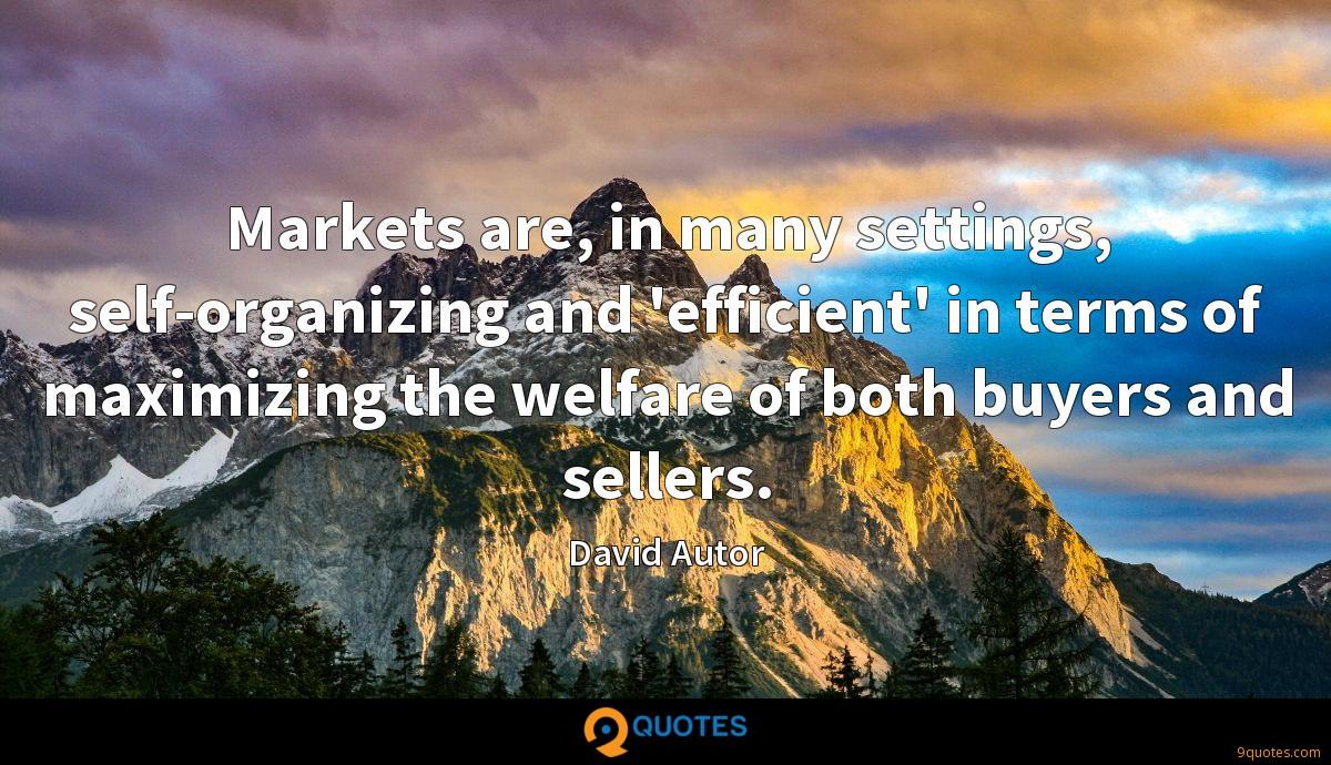 Markets are, in many settings, self-organizing and 'efficient' in terms of maximizing the welfare of both buyers and sellers.
