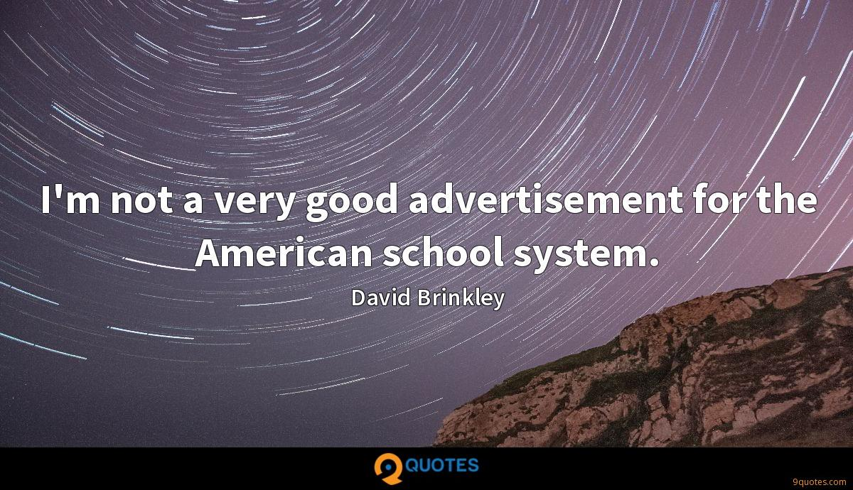 I'm not a very good advertisement for the American school system.