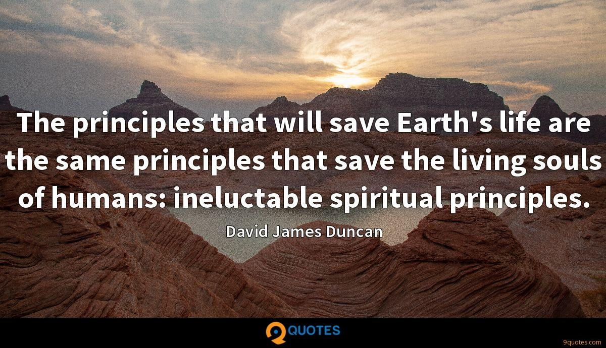 The principles that will save Earth's life are the same principles that save the living souls of humans: ineluctable spiritual principles.