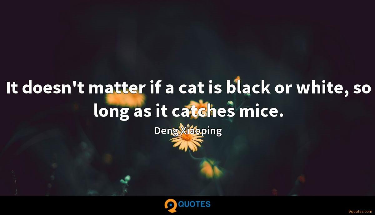 It doesn't matter if a cat is black or white, so long as it catches mice.