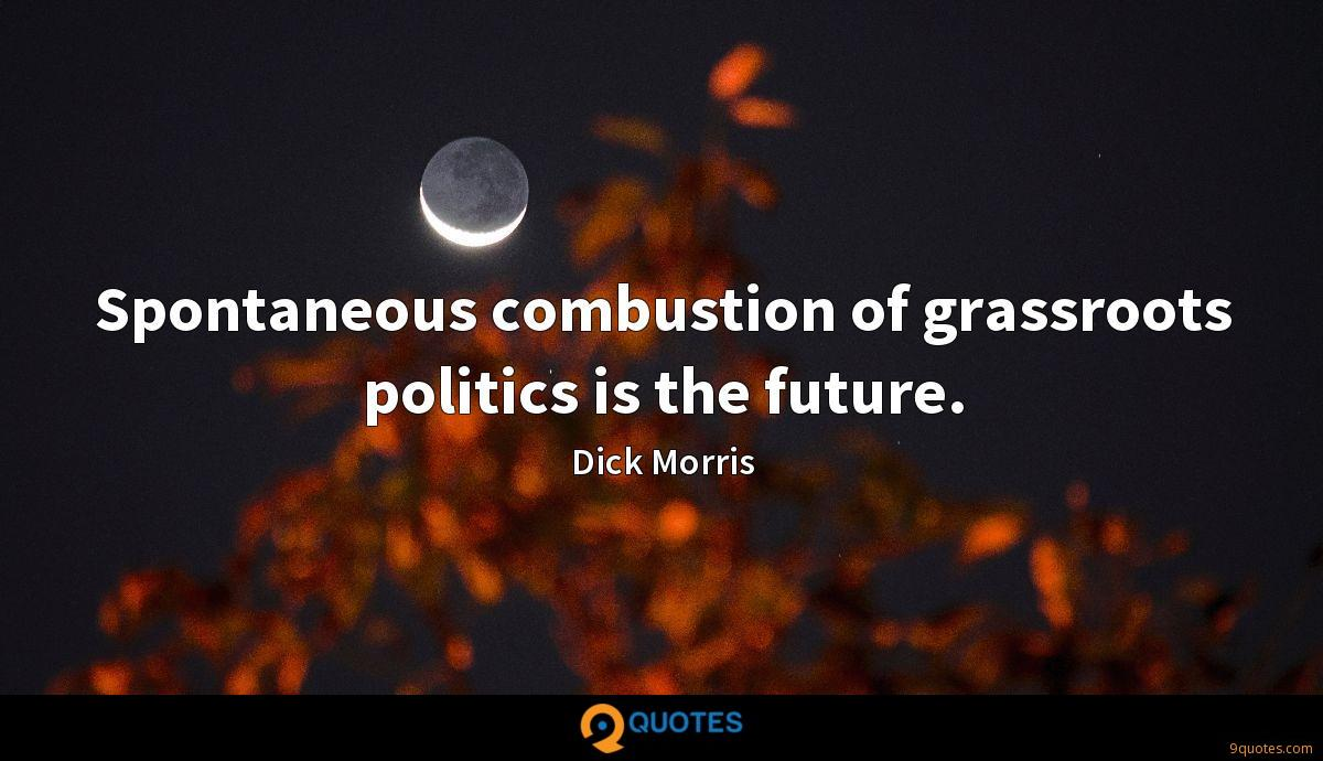Spontaneous combustion of grassroots politics is the future.