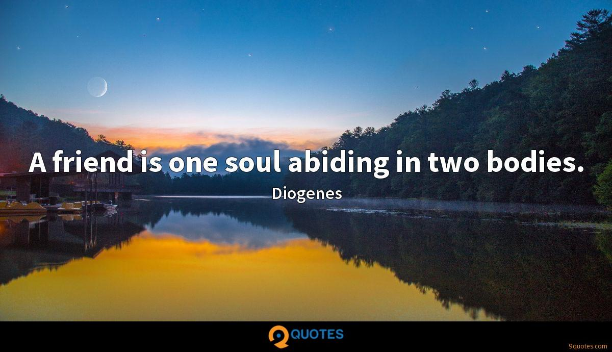 A friend is one soul abiding in two bodies.