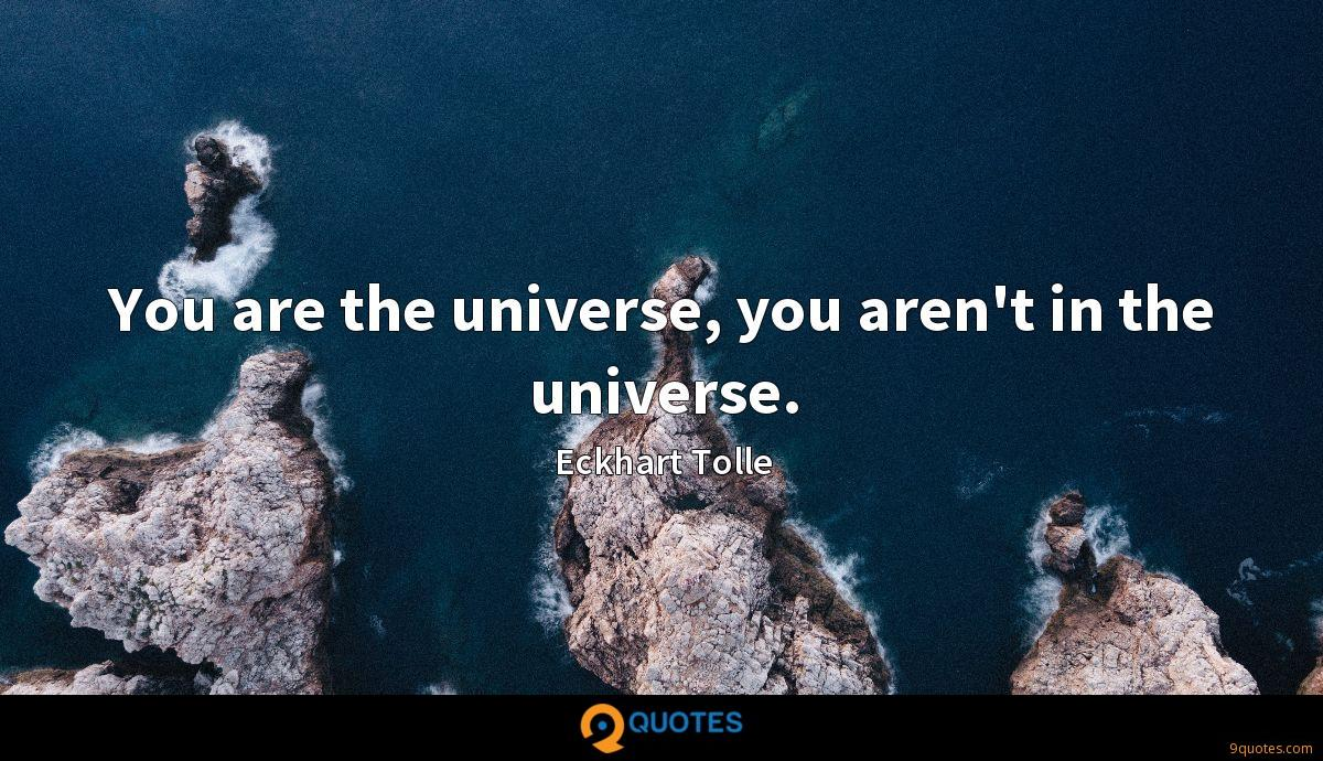 You are the universe, you aren't in the universe.