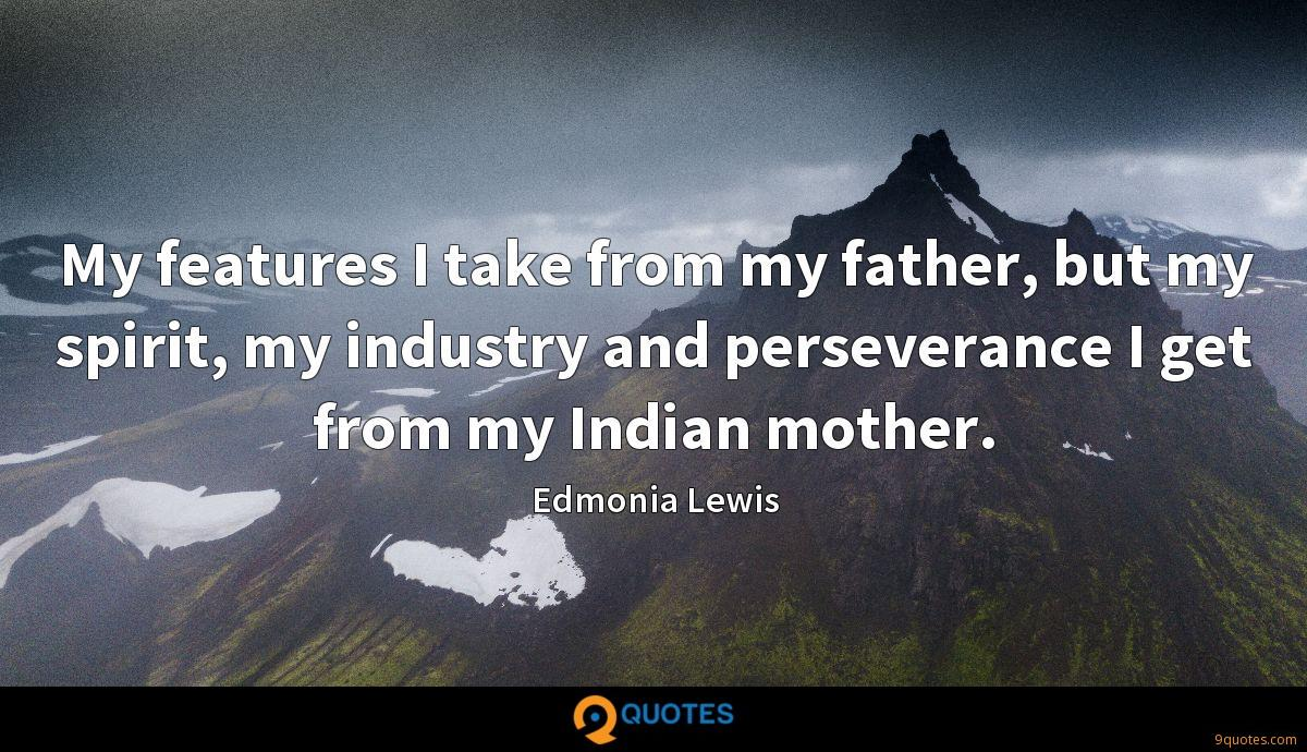 My features I take from my father, but my spirit, my industry and perseverance I get from my Indian mother.