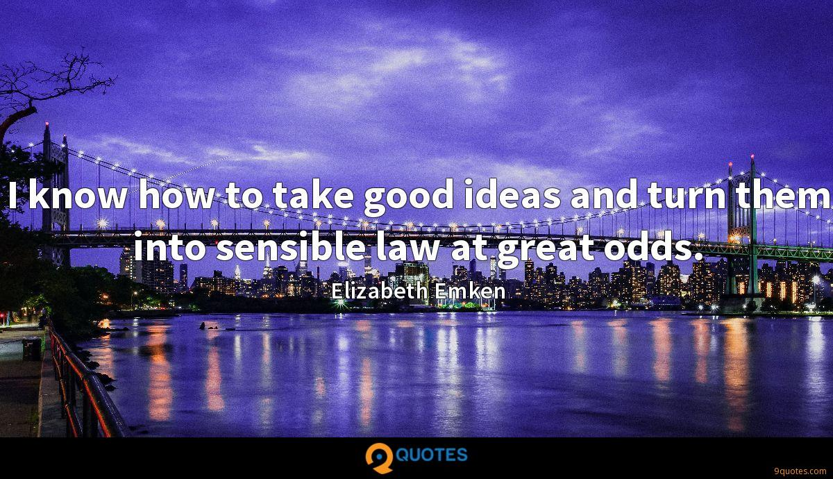 I know how to take good ideas and turn them into sensible law at great odds.