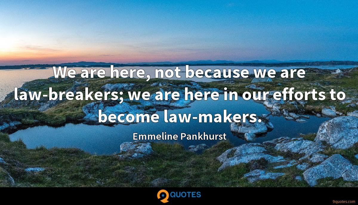 We are here, not because we are law-breakers; we are here in our efforts to become law-makers.