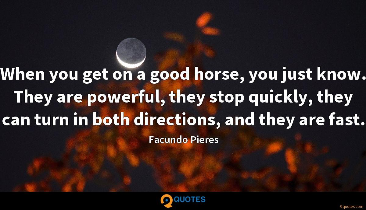 When you get on a good horse, you just know. They are powerful, they stop quickly, they can turn in both directions, and they are fast.