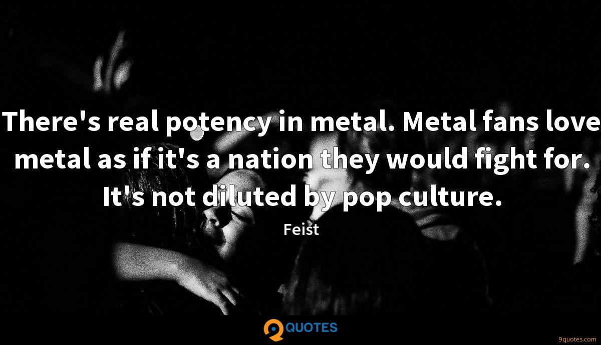 There's real potency in metal. Metal fans love metal as if it's a nation they would fight for. It's not diluted by pop culture.