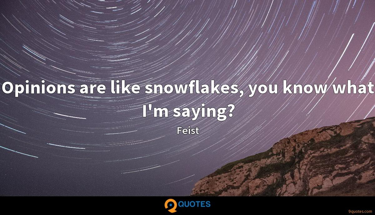 Opinions are like snowflakes, you know what I'm saying?