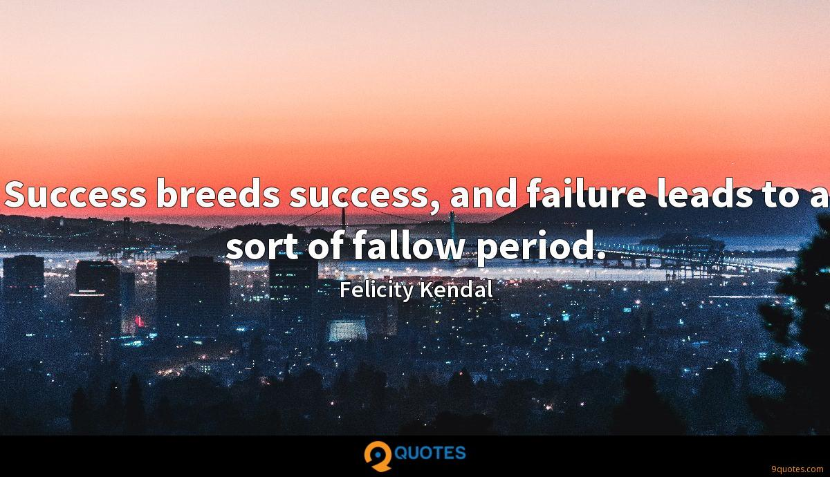 Success breeds success, and failure leads to a sort of fallow period.
