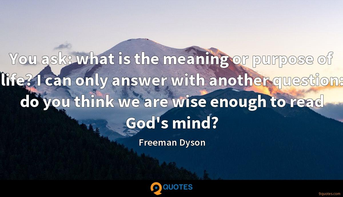 You ask: what is the meaning or purpose of life? I can only answer with another question: do you think we are wise enough to read God's mind?
