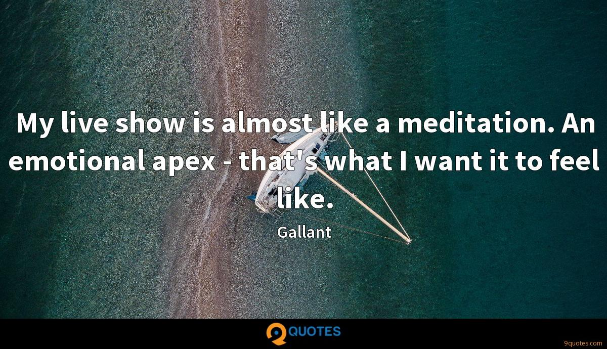 My live show is almost like a meditation. An emotional apex - that's what I want it to feel like.