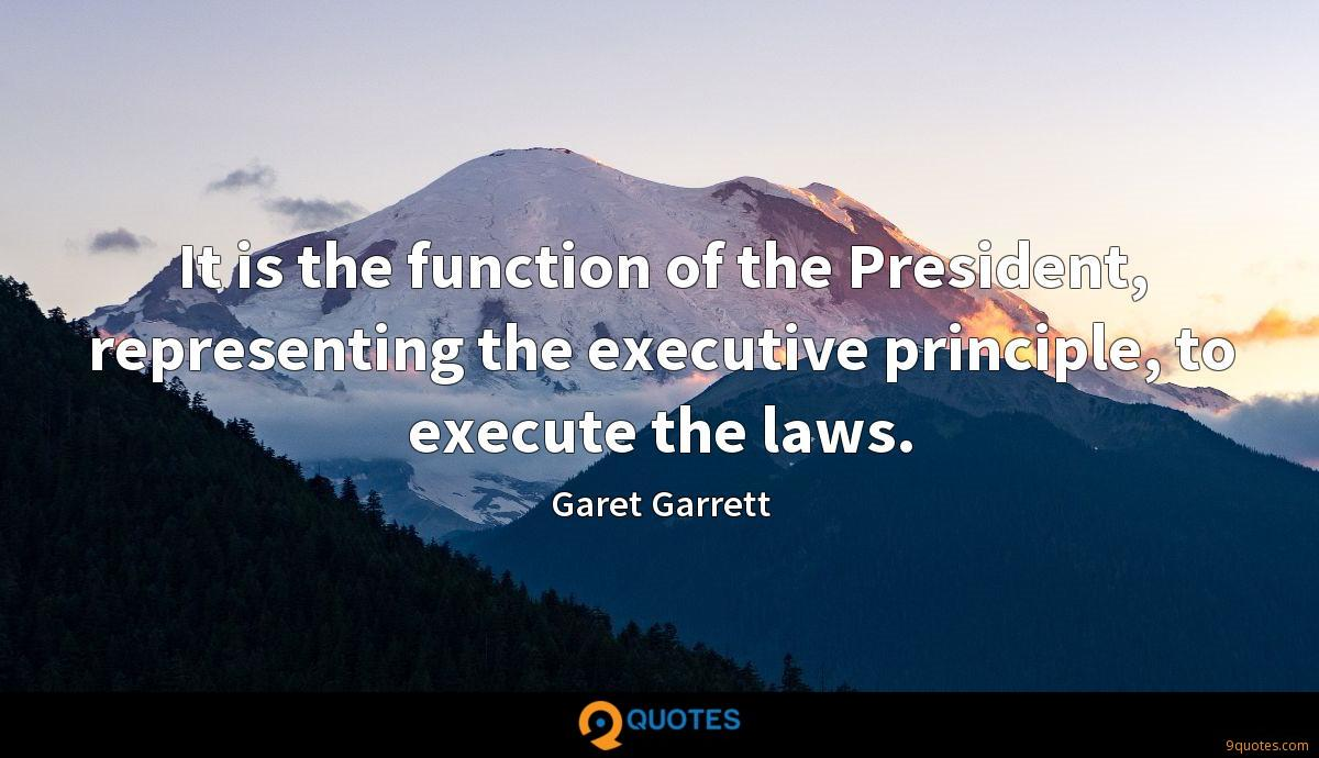 It is the function of the President, representing the executive principle, to execute the laws.