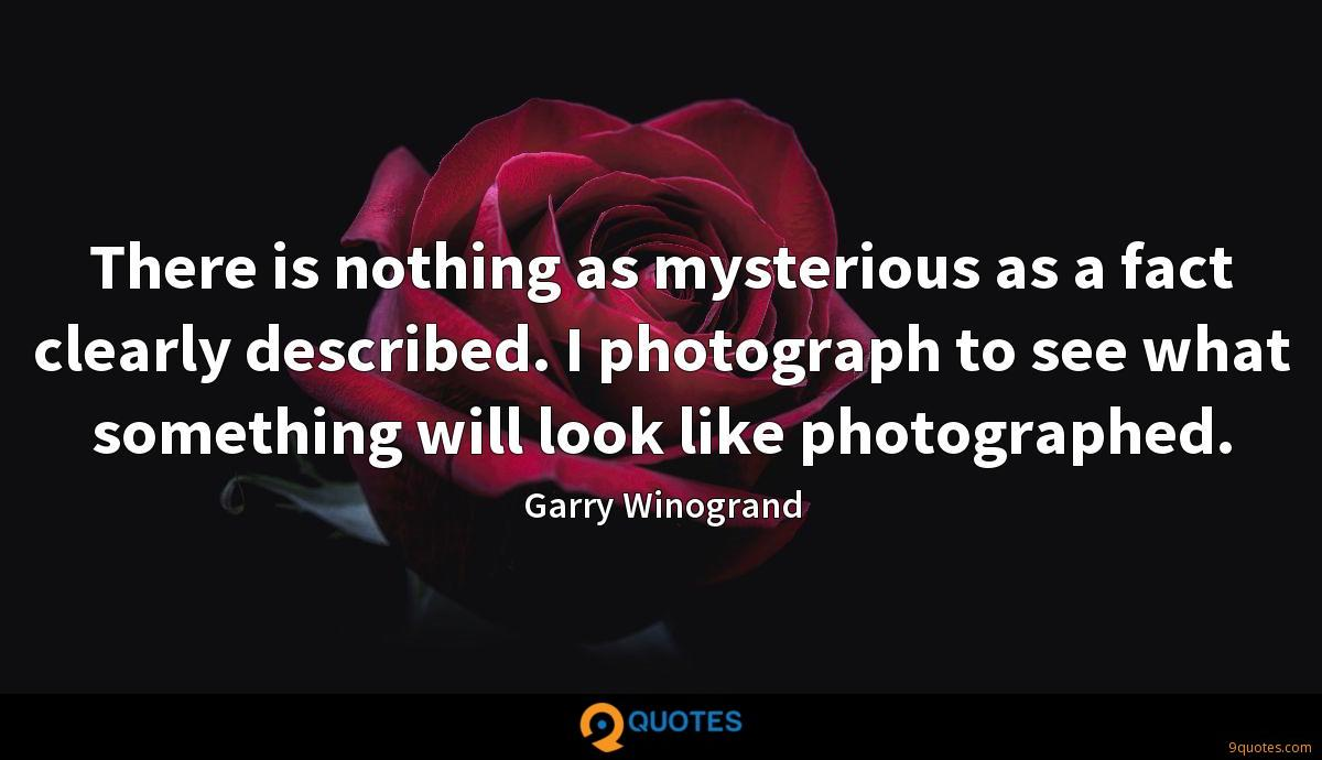 There is nothing as mysterious as a fact clearly described. I photograph to see what something will look like photographed.