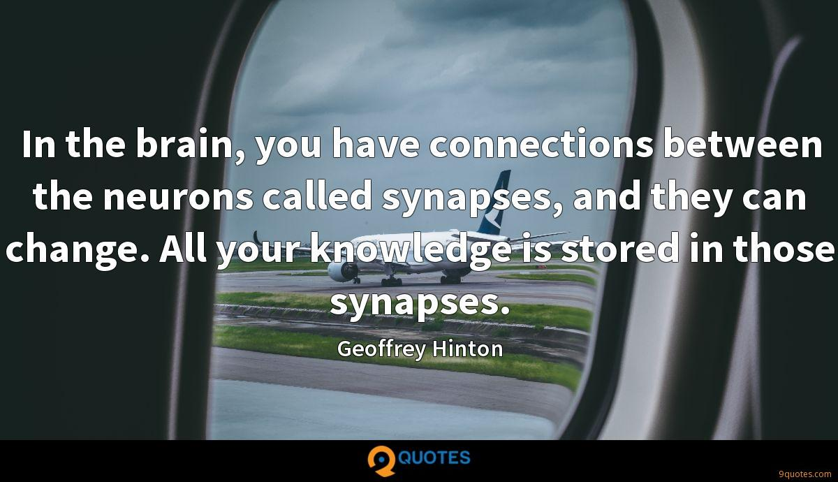 In the brain, you have connections between the neurons called synapses, and they can change. All your knowledge is stored in those synapses.