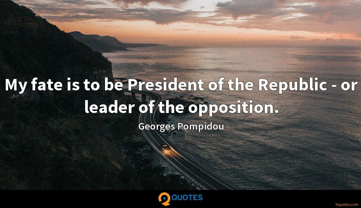 My fate is to be President of the Republic - or leader of the opposition.