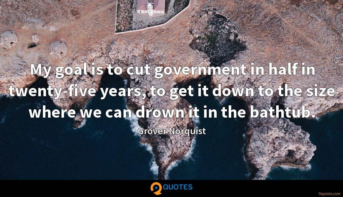 My goal is to cut government in half in twenty-five years, to get it down to the size where we can drown it in the bathtub.